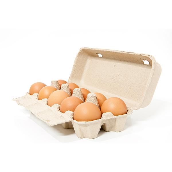 Fresh Glen View Poultry Eggs
