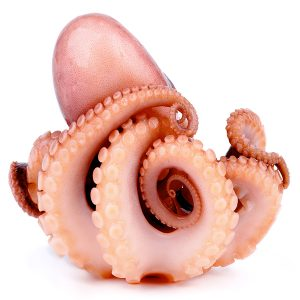 Marinated Large Octopus